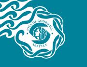 Флаг Сиэтла
